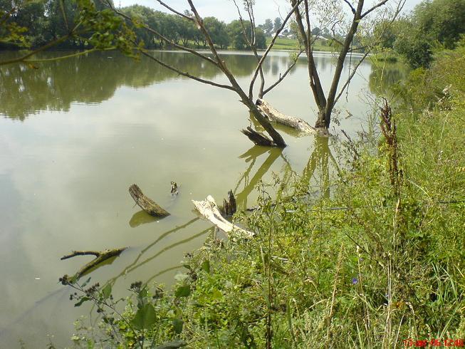Кромы рыбалка
